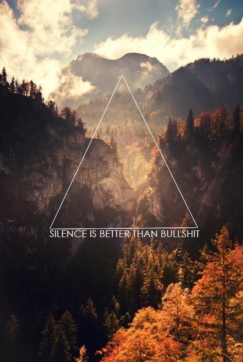 Silence Is Better Than Bullshit | The S.H.T.F. Art of War